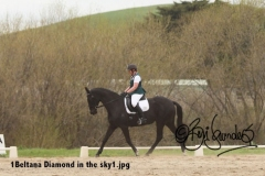 1Beltana-Diamond-in-the-sky1
